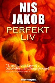 Hovedpersonen i Perfekt liv er Ludvig Werge har det perfekte liv - lige indtil den dag, hans kone forsvinder.